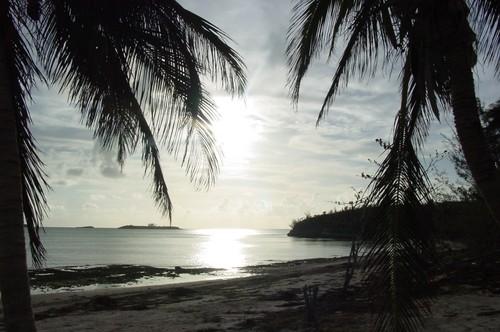 Palmetto Point sunset